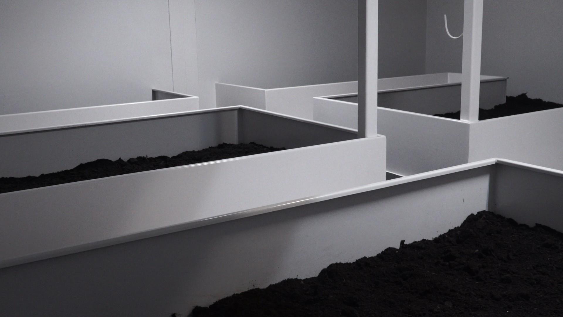 Grow Rooms